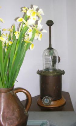 toscana-iris