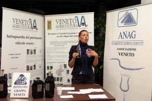 Distiilerie aperte 2014 - Veneto