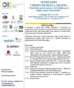 seminario 15 maggio